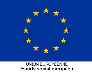 logo_fse_3